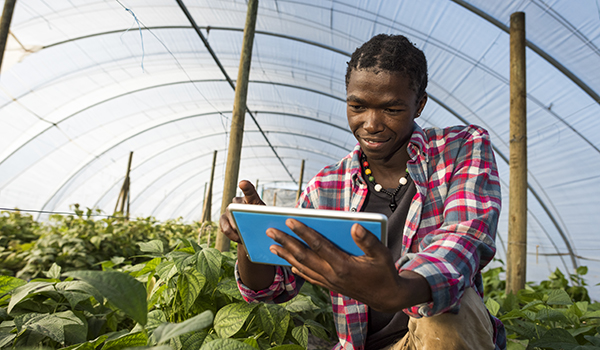 Standard Bank supports the digitisation of agriculture through its partnership with Founders Factory
