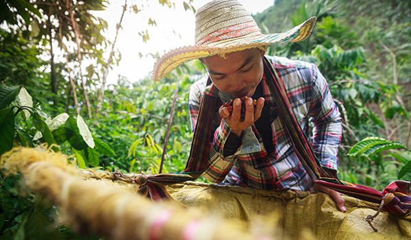 Rabobank and Banco Pichincha join forces to foster rural and agricultural development in Ecuador